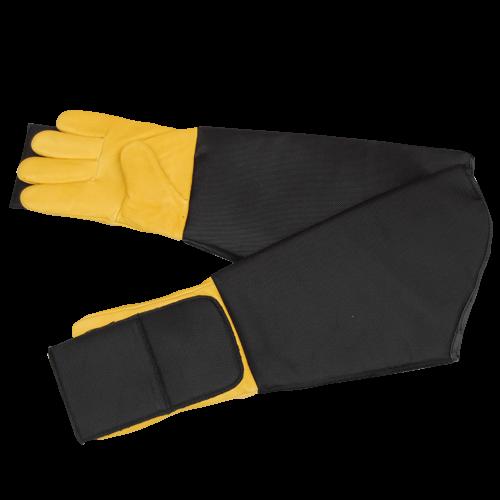 Rabies Gloves