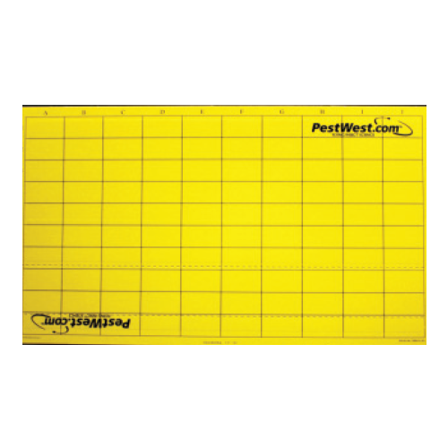 Yellow Chameleon® Monitoring Sticky Boards